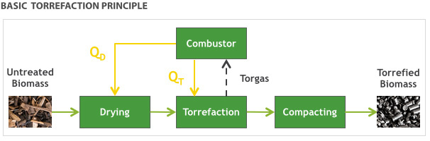 biomass torrefaction